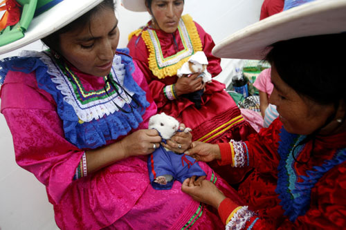 "Andean women dress up ""cuys"", or guinea pigs, for a fashion show at a guinea pig festival in Huacho, northern Lima, July 20, 2008. [REUTERS]"