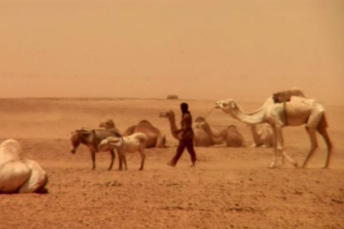 Ethnic Tuaregs have maintained their nomadic existence in the Sahara desert for thousands of years. But it is an existence that is now under threat
