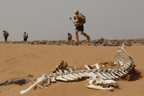 The Marathon des Sables - Marathon of the Sands - is taking place in the Sahara desert in Morocco, with more than 1,000 competitors running 151 miles in up to 50C heat [AFP]