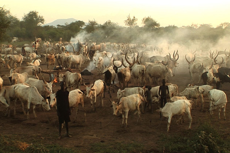 Thousands of people in the Mundari tribal area of Terekeka County in Southern Sudan have been displaced after neighbouring tribes killed or chased off their men, burned their villages and stole thousands of their cattle [May Ying Welsh]
