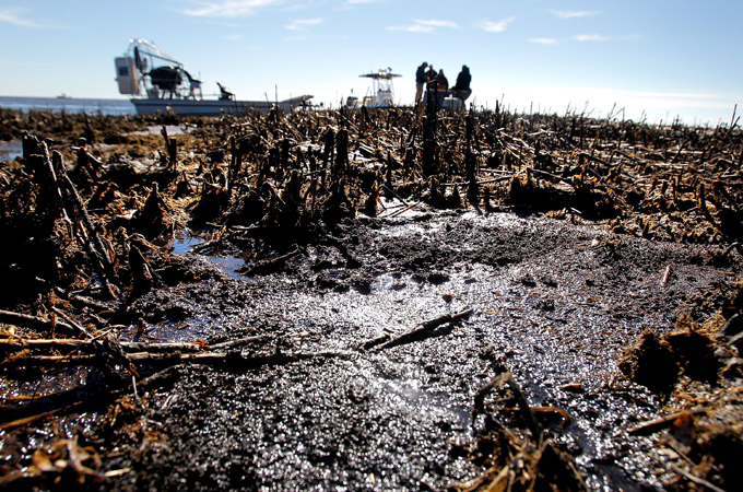 the effects of oil spill on the ecology From 10 communities and 5 lgas in the oil producing agro-ecological zones of delta state, the negative impact of oil spill on crop production was accentuated.