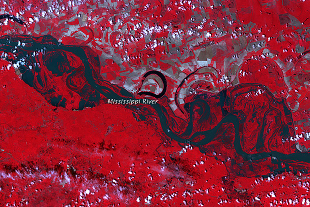 Officials expect three million acres (1.2 million hectares) to be flooded due to the activation of spillways and breaching of levees. This satellite image was taken on May 11, 2011, near Natchez, MI [NASA]