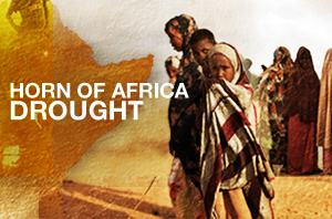 Horn of Africa: Drought
