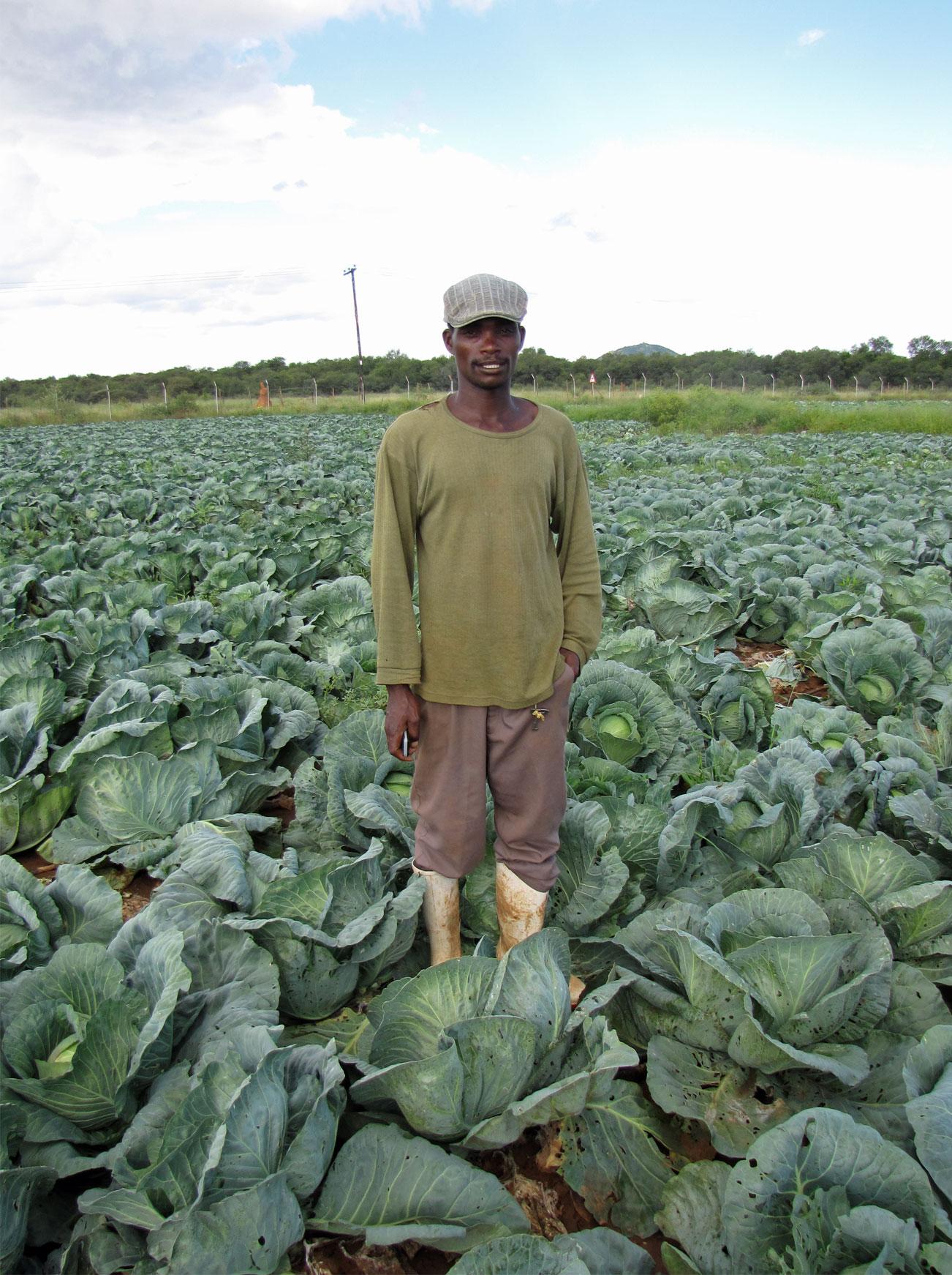 Botswanan food
