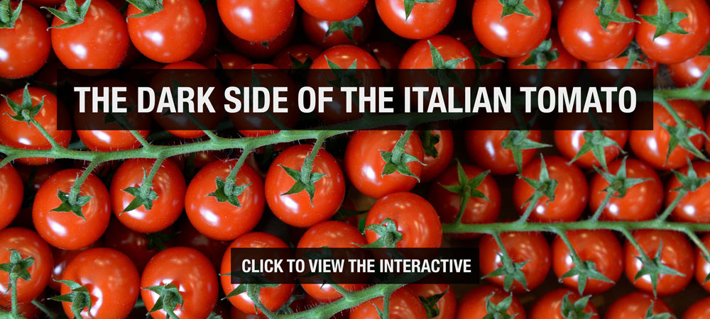 The dark side of the Italian tomato [Al Jazeera]