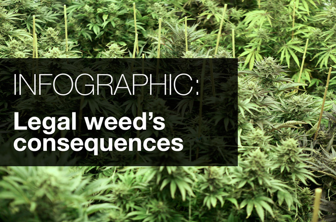 the consequences in legalizing marijuana Photo by the nida changes in marijuana policies across states legalizing marijuana for medical and/or recreational use suggest that marijuana is gaining greater.