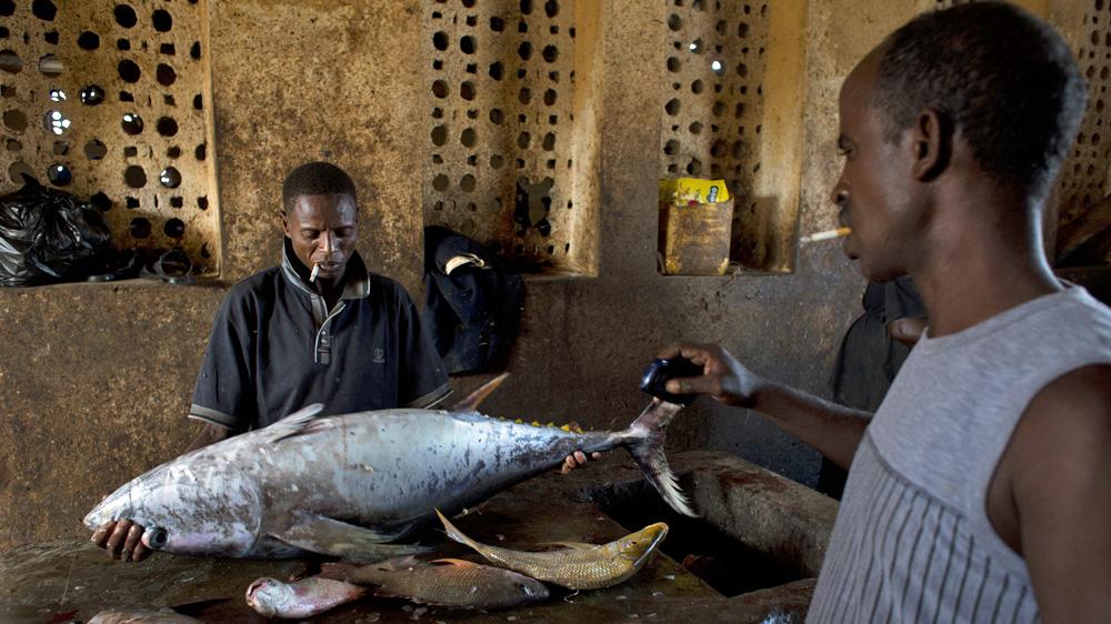 A Man Prepares To Process A Tuna At The Bosaso Harbor In Puntland Somalia Karel Prinsloo Adeso