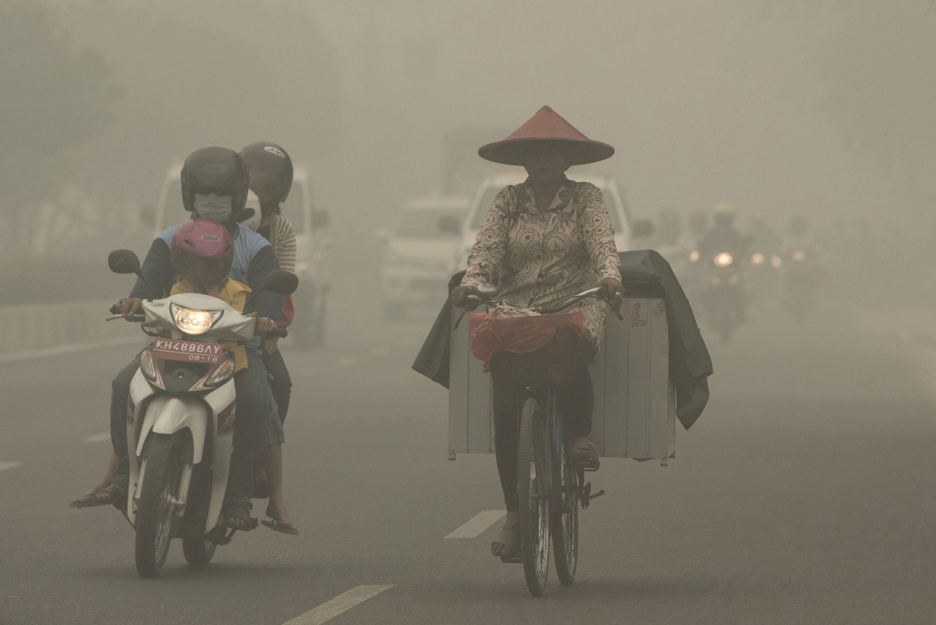 Forest fires in Indonesia have been shrouding parts of Southeast Asia in haze for weeks. [Rosa Panggabean/Antara Foto/Reuters]