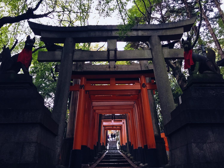 Fushimi Inari-Taisha, Japan's most iconic shrine | | Al ...