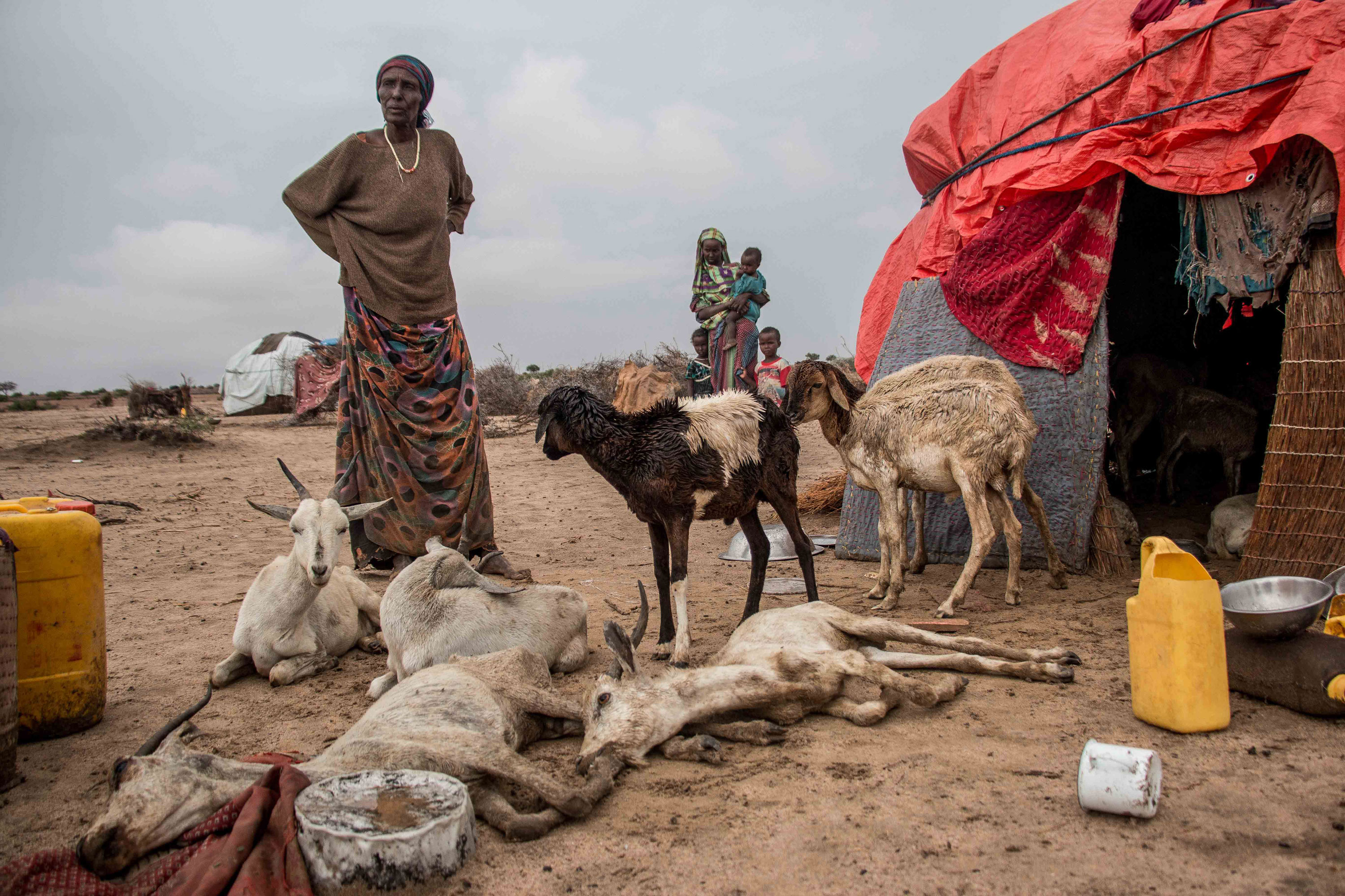 Killing Drought in Somalia