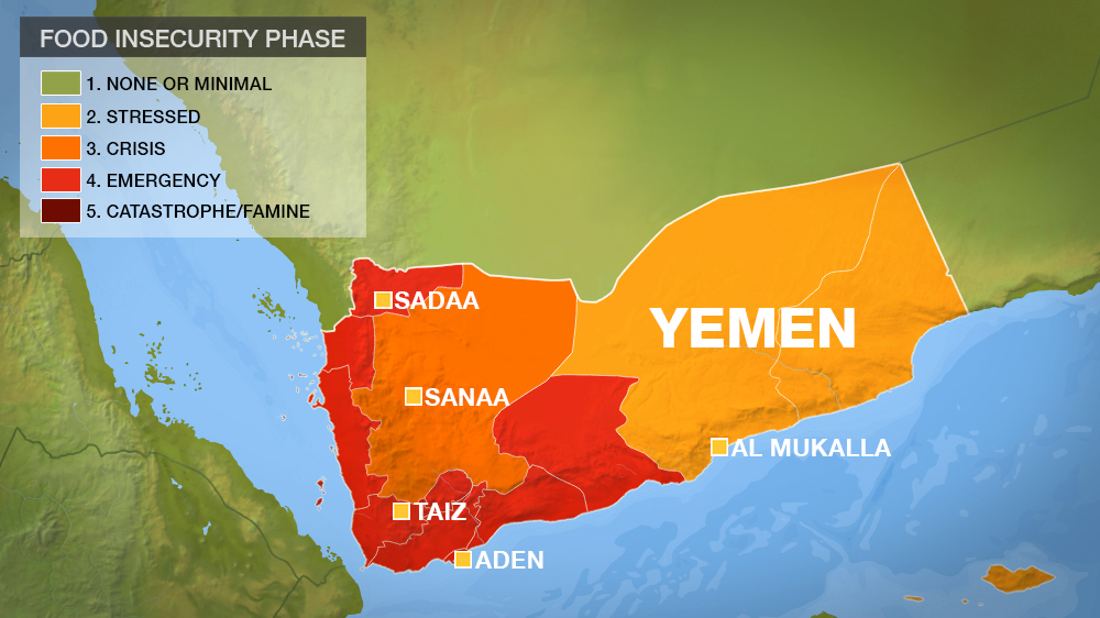 Starvation in Yemen: 'We are hoping just to survive ...