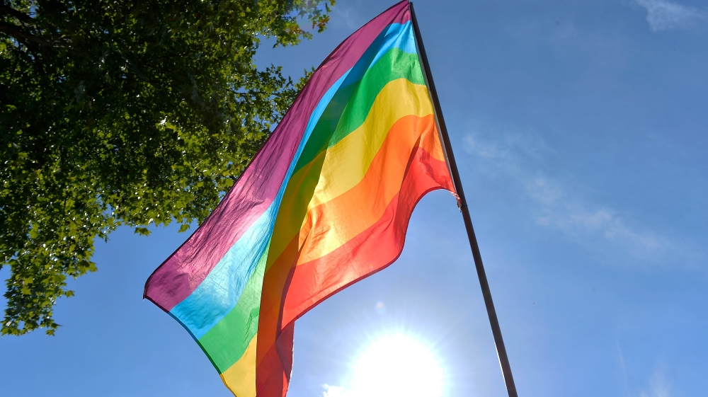 sexual minorities The sexual minority youth assistance league (smyal) is the only washington,  dc metro area service organization solely dedicated to supporting lesbian, gay,.
