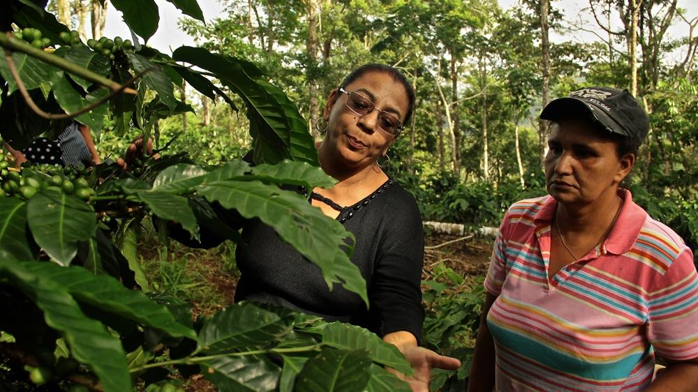 Gaining Ground Nicaragua S Women Coffee Farmers Latin