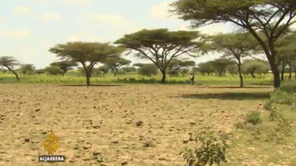 Ethiopia hit by worst drought in decades   News   Al Jazeera