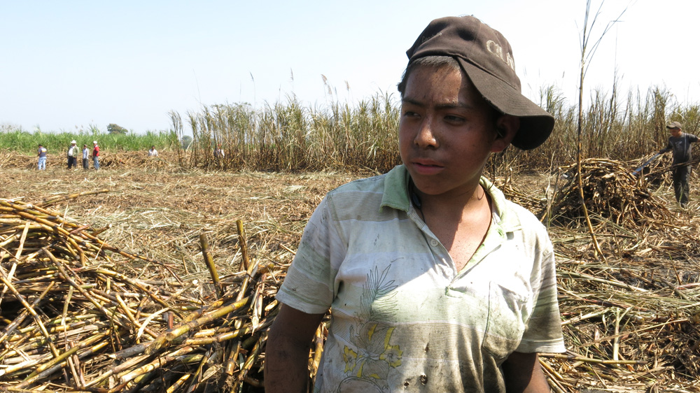 child labor in mexico With no time to grow up shows in 8 minutes a face of agriculture often invisible produced by the ilo - international programme on the elimination of child.
