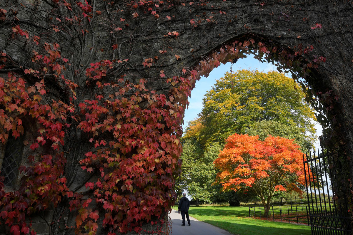 Autumn has brought a very vivid display of colours to much of Europe, including Stourhead in the UK. [Toby Melville/Reuters]