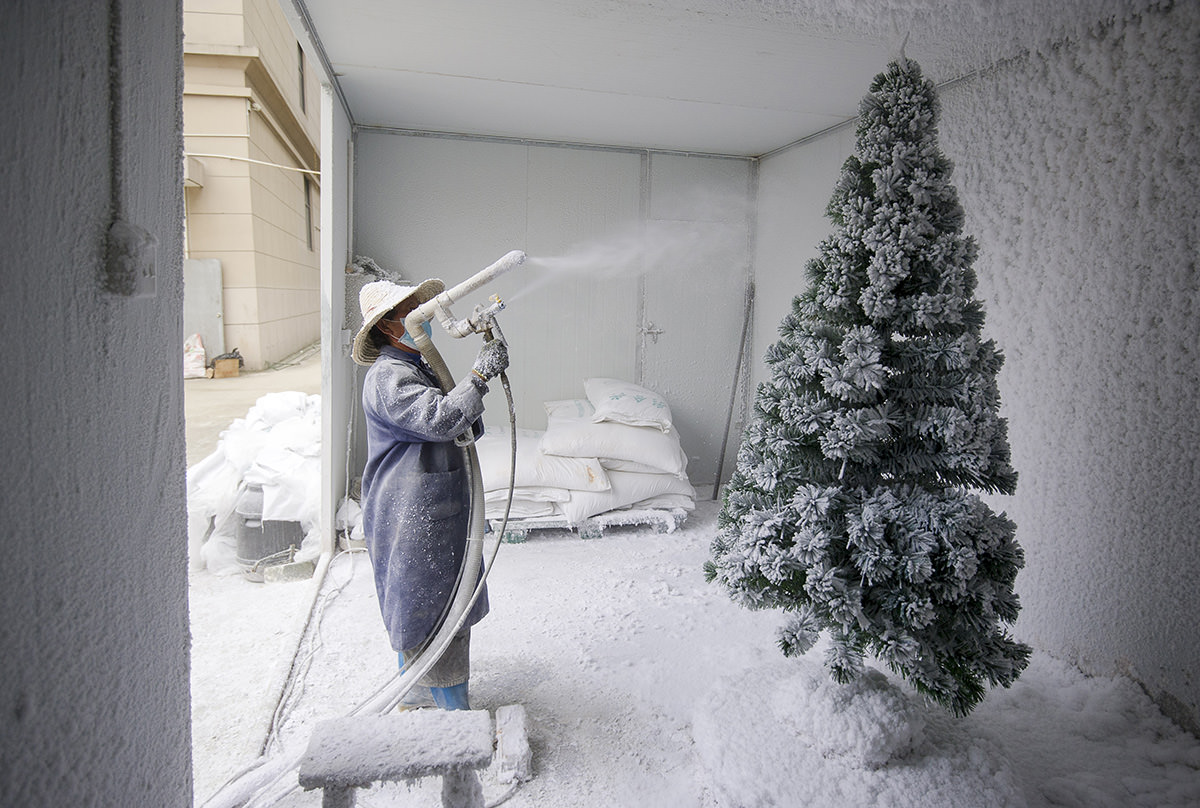 a worker sprays a christmas tree with artificial snow at the sinte an christmas tree factory
