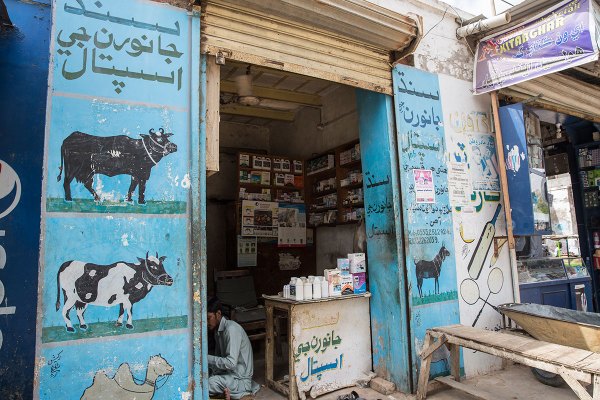 For a region so heavily reliant on livestock, there are only 12 vets in the entire district of 4.6 million animals. The government ran a livestock vaccination programme across 68 villages after the dry season, and diseases accounted for the deaths of over 300,000 livestock in 2014. [Faras Ghani/Al Jazeera]