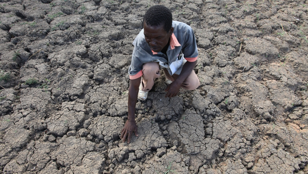 Harare seeking $1.5bn to help save more than a quarter of the population from starving to death, as drought worsens.