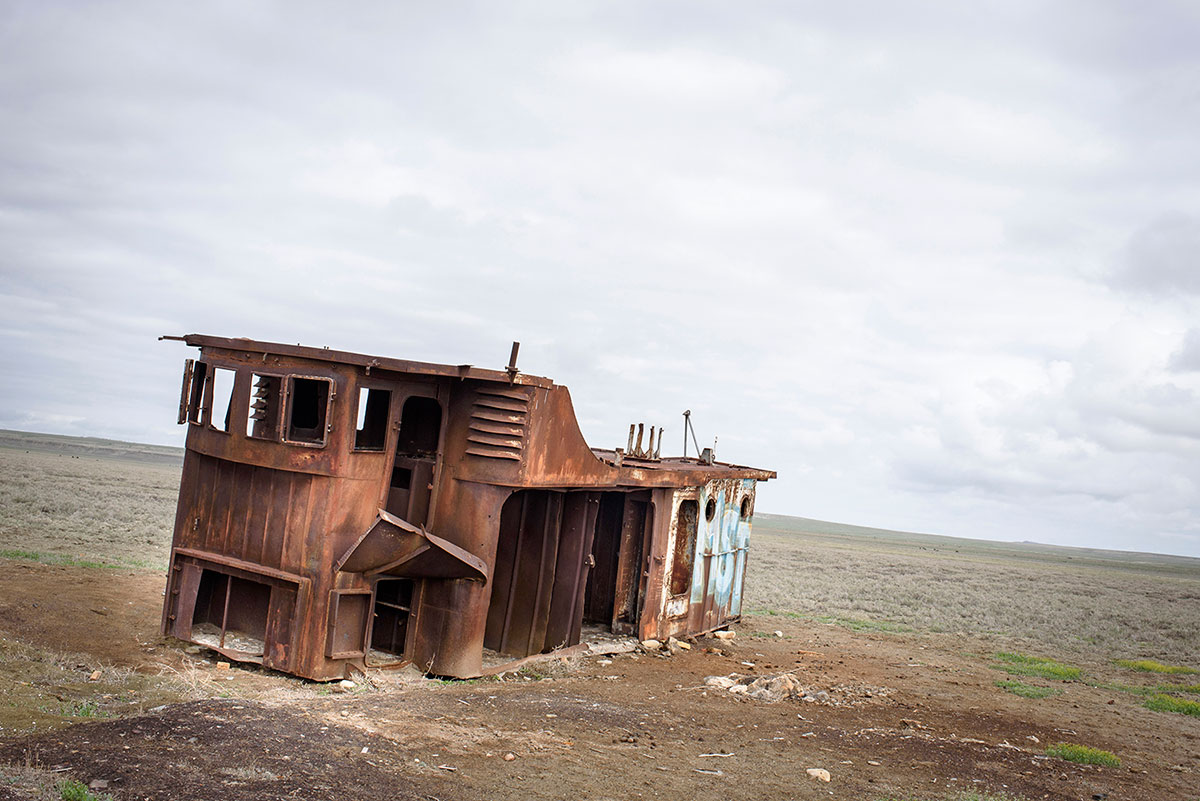 Aral Sea: the return of a large fish in a small reservoir