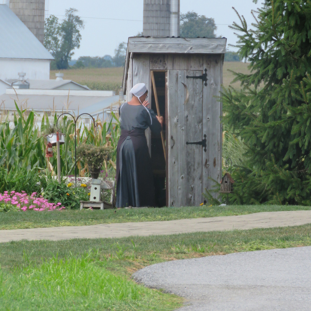 US Elections: America's Amish voters | Hillary Clinton | Al
