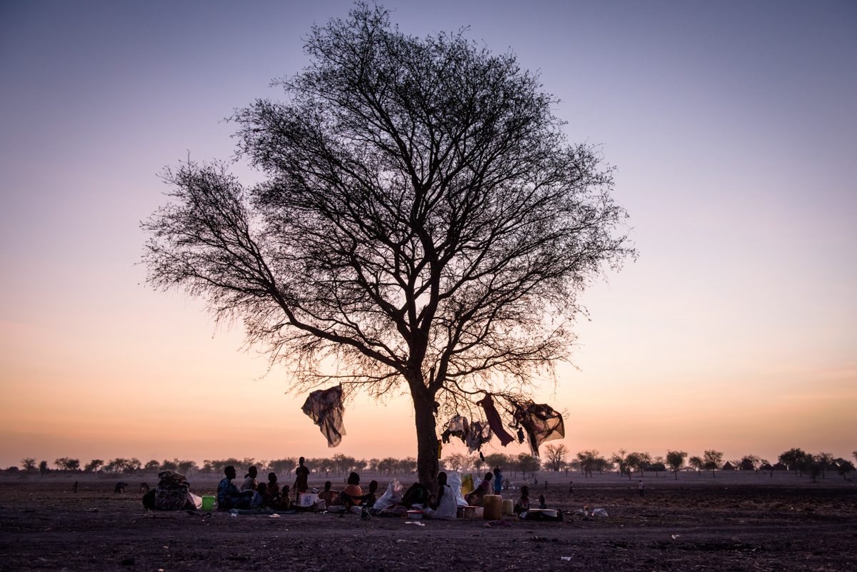 Thousands of members of the Shilluk tribe took refuge from the fighting between government forces and rebels, camping out under trees. [Phil Hatcher-Moore/Al Jazeera]