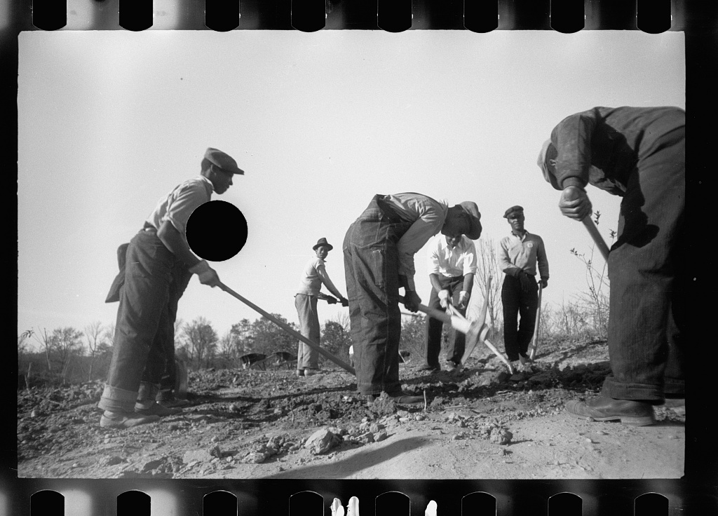 This photograph was taken in Prince George's County, Maryland, of transients clearing land. [Mydans, Carl/Library of Congress]