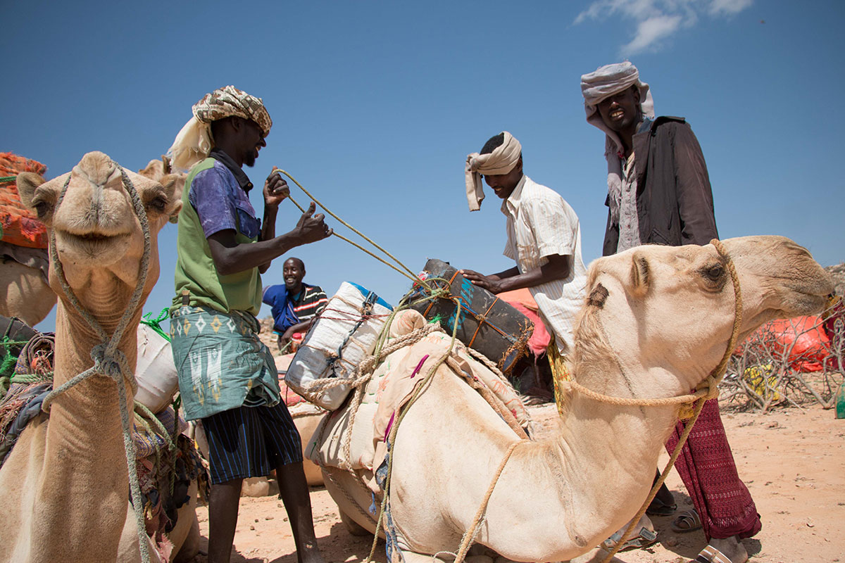 Forced to move as drought strikes Puntland