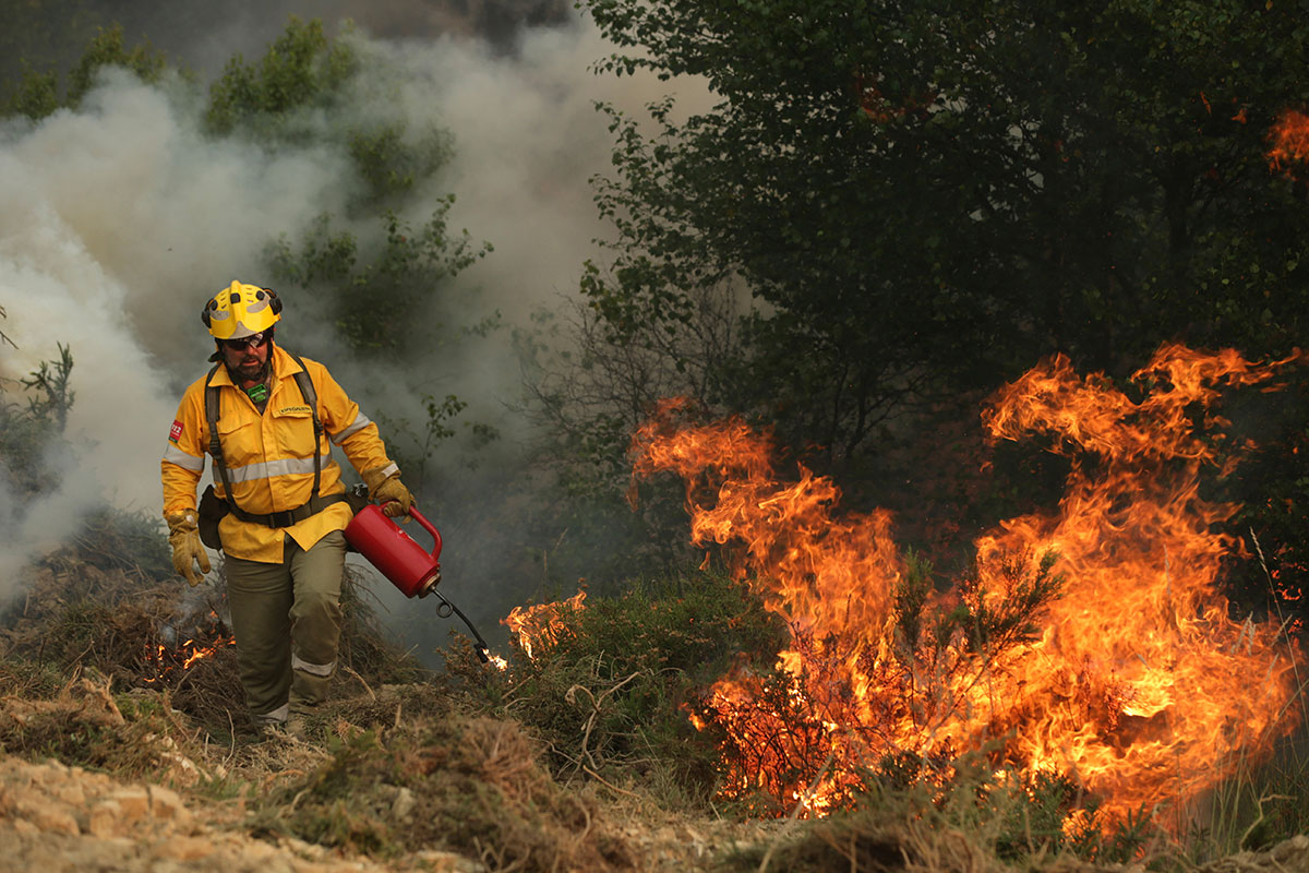 Portugal's president says the country's pain 'knows no end' as it mourns at least 61 people killed in the deadliest wildfire in memory. Here, a Spanish specialist firefighter is helping in the efforts to put out the fire at Pampilhosa da Serra, central Portugal. [Tiago Petinga/EPA]