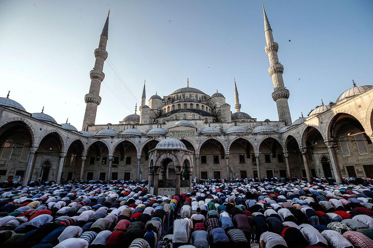 el palqui muslim Nombre genérico 'cestrum ', del griego kestron (nombre griego de un arbusto) y el epíteto 'parqui ' con sus ramas se fabrica la cruz de palqui.