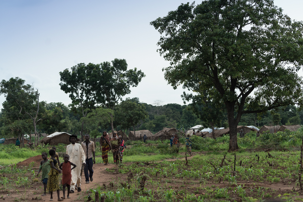 Once a thicket of trees, the Ndoubou camp is now an area of of makeshift homes and small garden patches. [Sorin Furcoi/Al Jazeera]