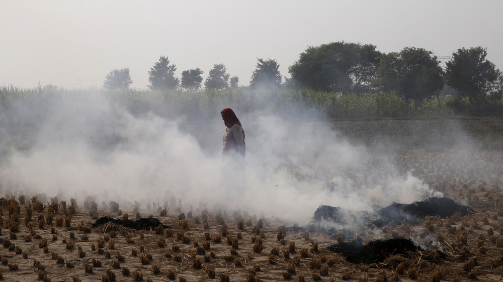 A farmer walks through smoke caused by farming waste set on fire at Palwal in the state of Haryana