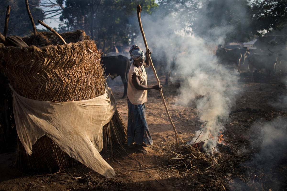 A displaced woman tends to a fire near a host family's cattle in Paoua. [Will Baxter/ Al Jazeera]