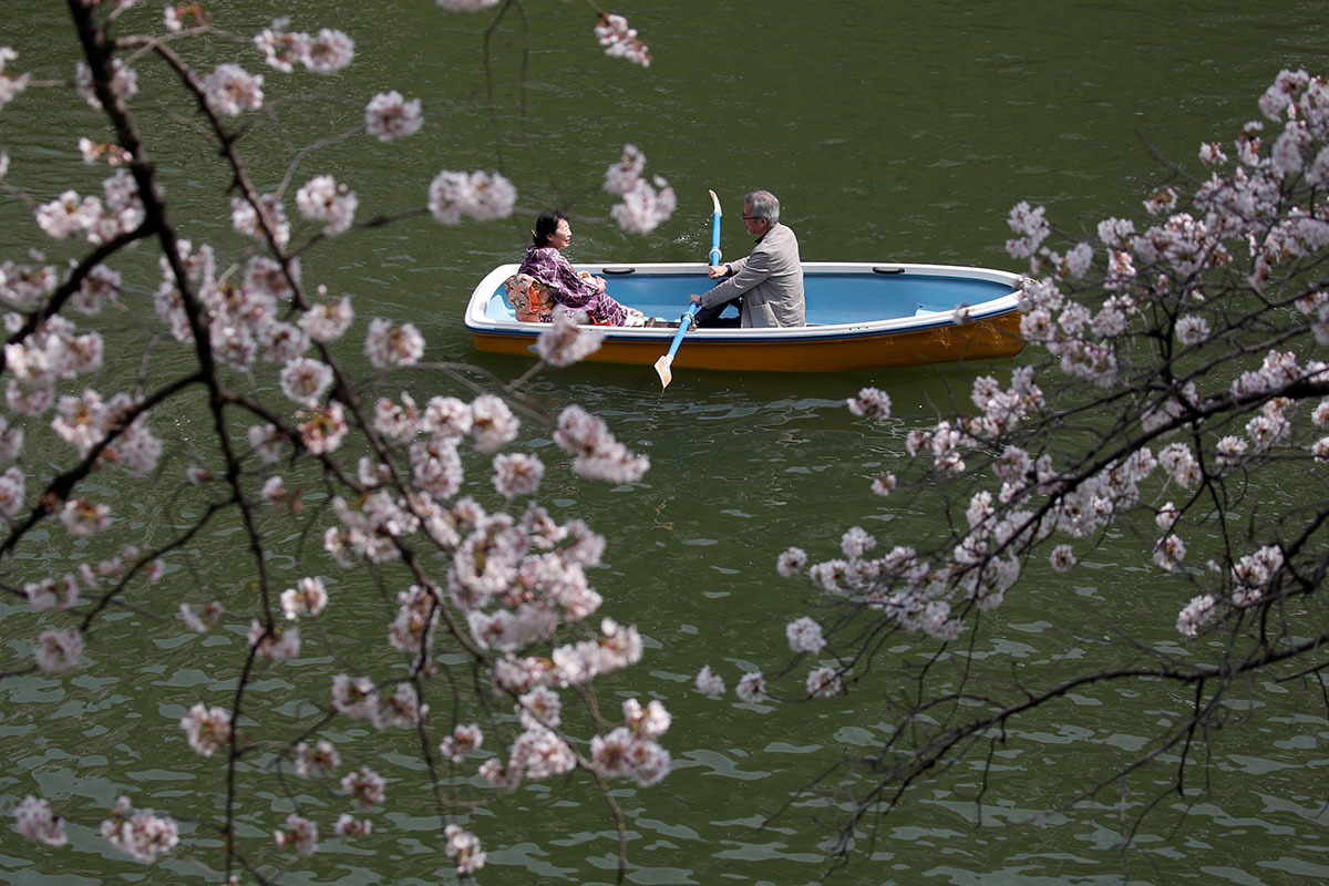 Visitors view the blossoms from a boat at the Imperial Palace in Tokyo. [Issei Kato/Reuters]