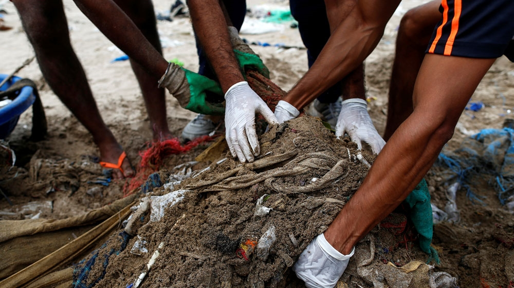 Filthy Mumbai beach rebreeds turtles, thanks to a city lawyer | Environment