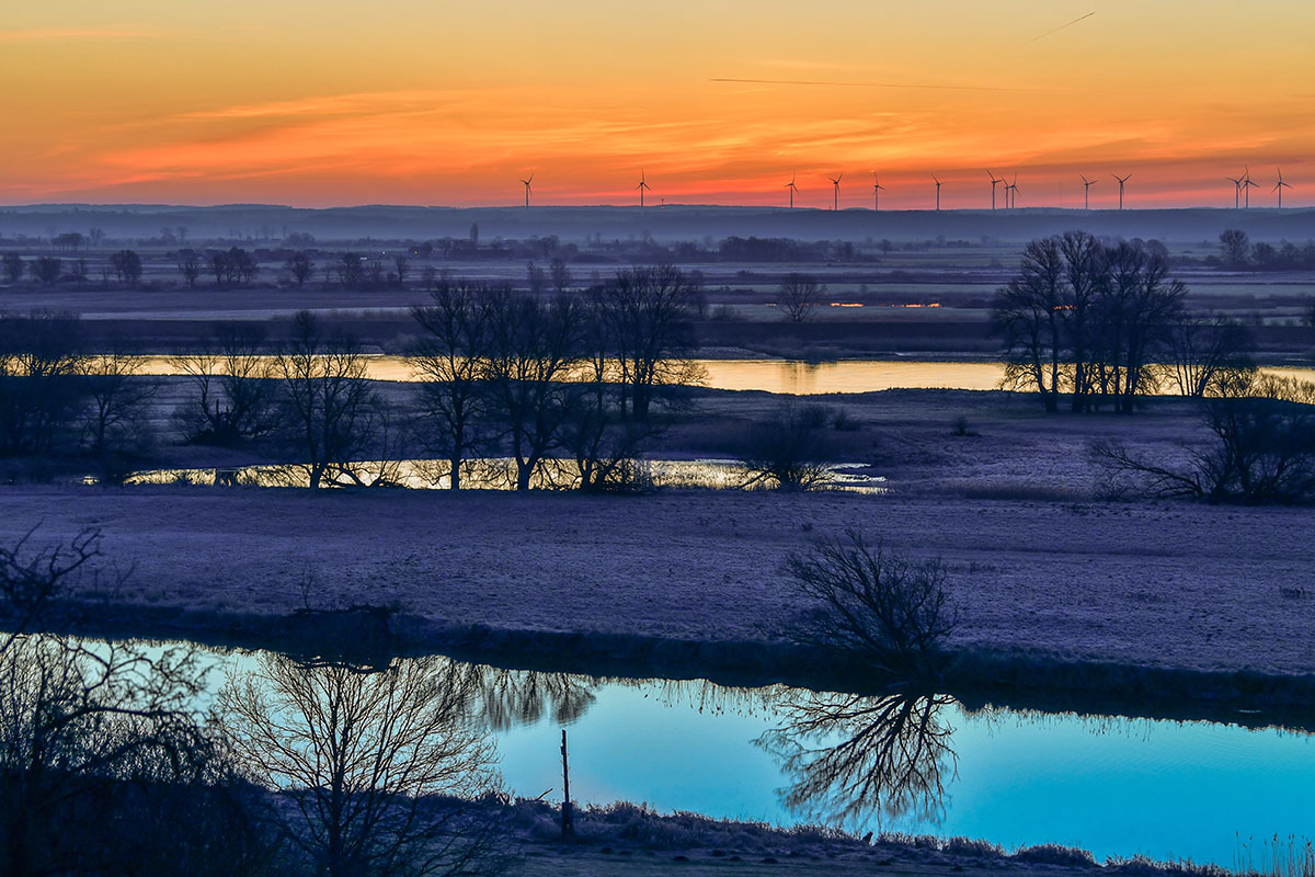 The sun rises on a sunny, warm day in Lebus, Germany [Patrick Pleul/AFP]