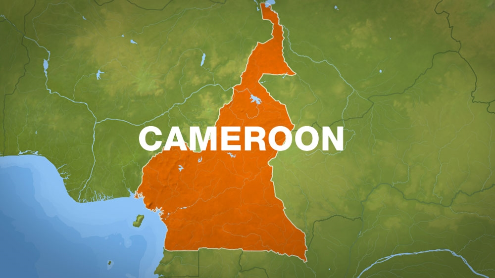 Cameroon to probe new video of 'armed forces' killing civilians   News