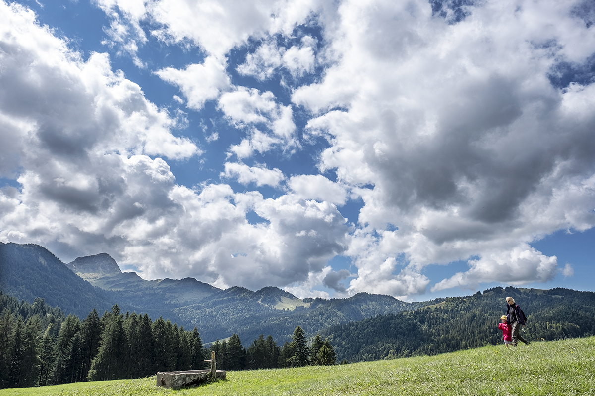 It may not be the sound of music, but these hills are definitely alive in the gorgeous summer weather here in Wolfzenalp, Switzerland. [Walter Bieri/EPA]