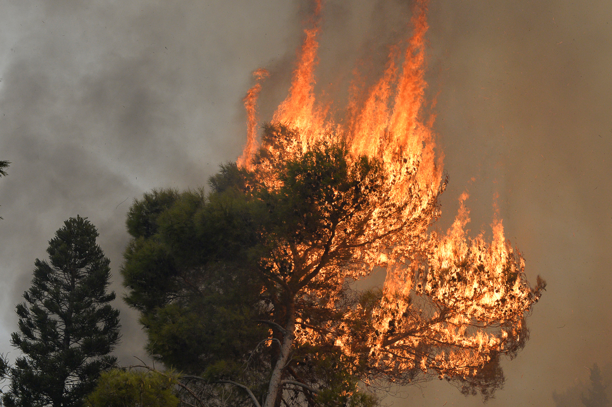 Wildfires burn out of control in Lebanon and Syria