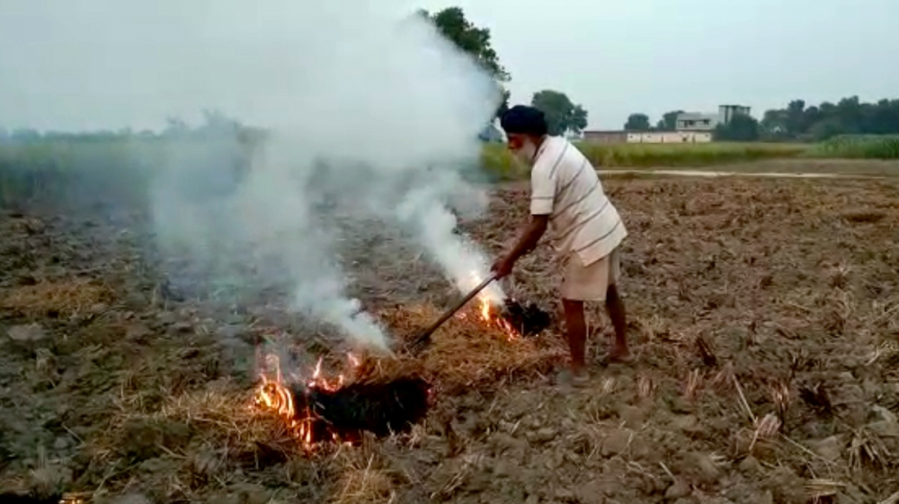 farmer burning paddy stubble in a field in Amritsar, India, Wednesday, Oct. 16, 2019. The Indian capital's air quality levels have plunged to