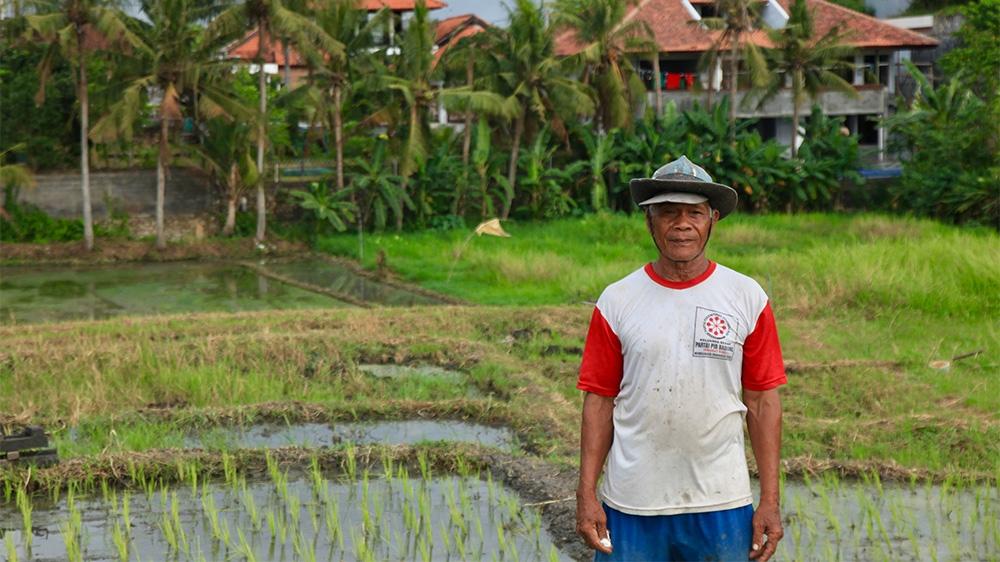 Indonesia Bali Canggu