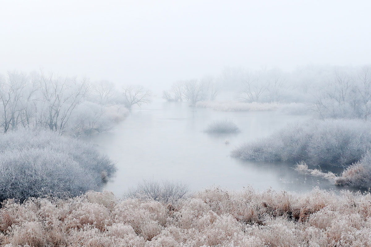 In Chuncheon, South Korea, January's winter meant hoarfrost covering trees and grass along the Soyang River. [Yonhap/EPA]