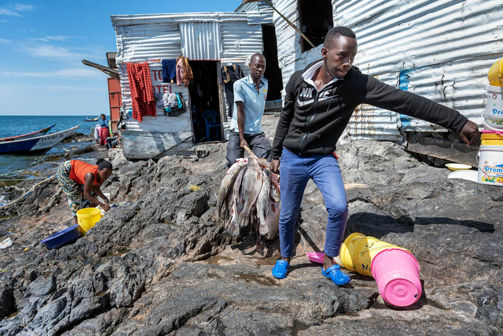 As fish stocks have sharply diminished in much of Africa's biggest lake, large adult Nile perch are still found in the deep waters of Lake Victoria that surround Migingo making the island contested. [Jeroen van Loon/Al Jazeera]
