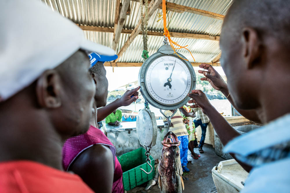 Thanks to the growing demand, prices of Nile perch rose by 50 percent in the last five years, according to Kenyan fisherman Kennedy Ochieng. [Jeroen van Loon/Al Jazeera]