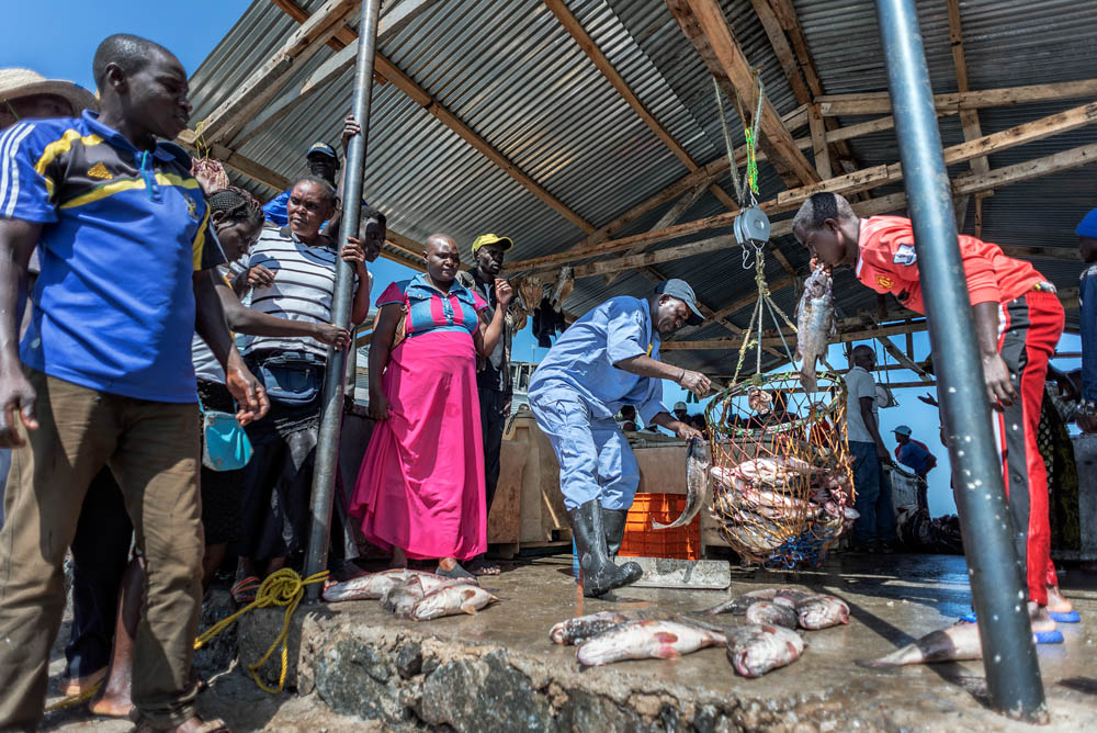 Kenyan fishermen around Migingo complain about Ugandan officers harassing them, seizing fish and equipment in what they say are Kenyan waters. While the shallow waters where fish breed are more on the Kenyan side, the deep waters where fishermen fish are more on the Ugandan side. [Jeroen van Loon/Al Jazeera]