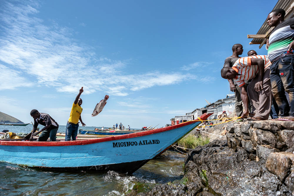Most fishermen don't own a boat. They have to pay 80 percent of their catch to boat owners on the mainland, according to Ugandan fisherman Eddison Ouma. [Jeroen van Loon/Al Jazeera]