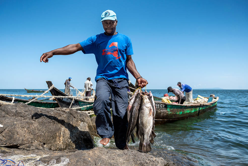While the freshwater fish has been a profitable export to the European Union for several decades, recently there has been soaring demand from Asia, where the swim bladder from big, adult Nile perch are considered a delicacy. [Jeroen van Loon/Al Jazeera]