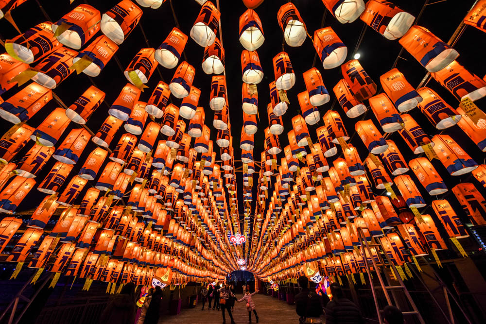 Visitors walk through a tunnel decorated with lanterns at a light show to celebrate the  Chinese Lunar New Year in Xian, Shaanxi, China. [Reuters]
