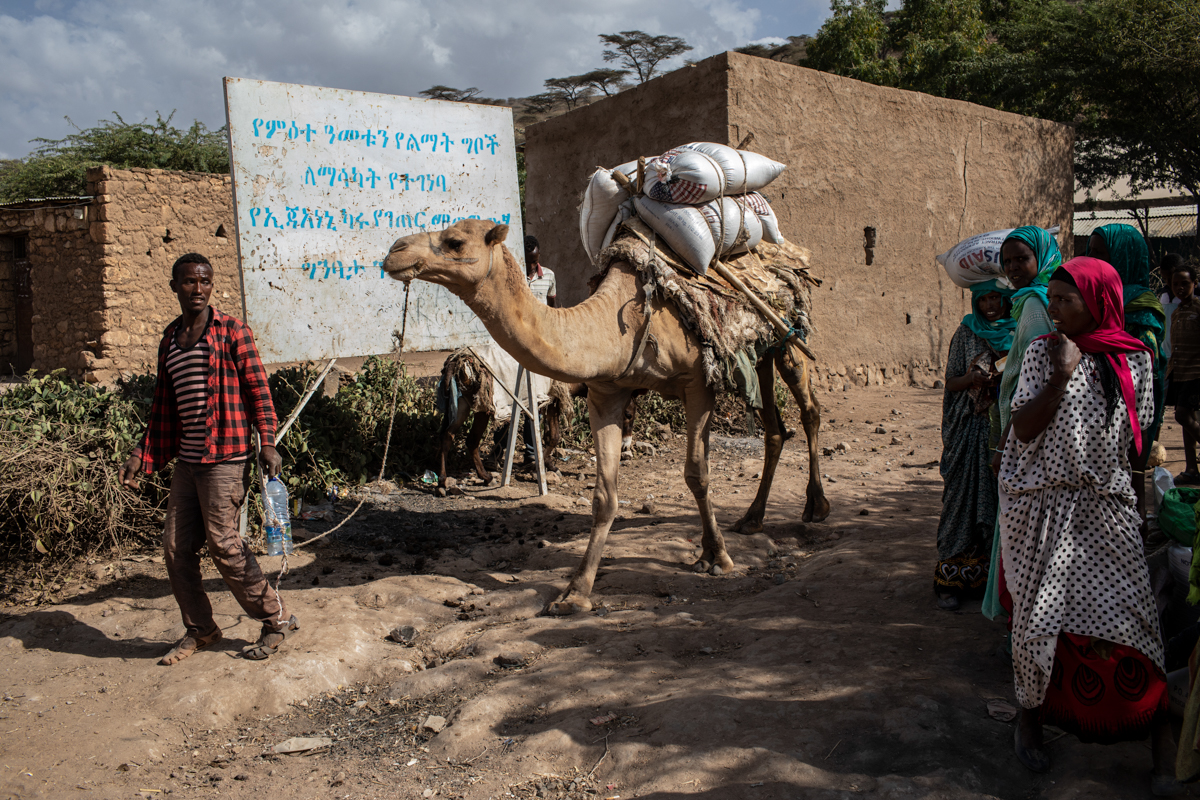A man uses a camel to transport rations of wheat to his village from a distribution point in Ejianeni. Rainfall from October to December of last year was 55 percent less than normal in some parts of the region. [Will Baxter/CRS]