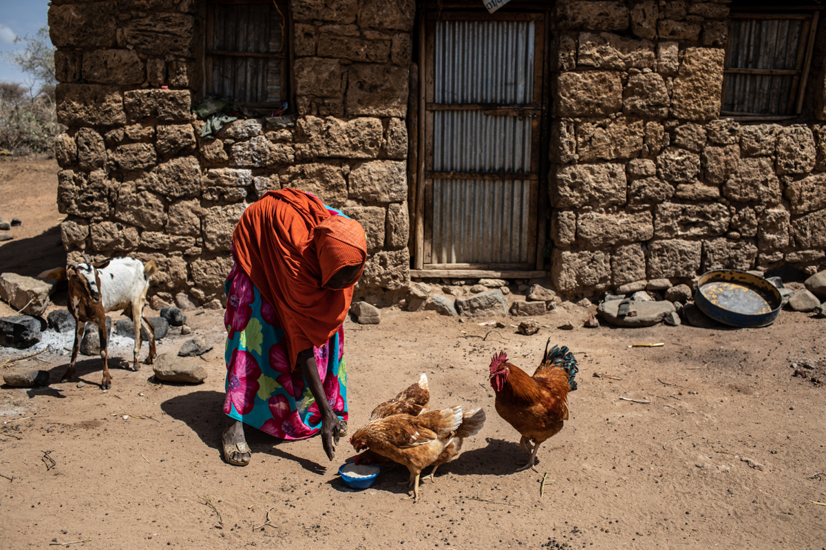 In arid regions of Ethiopia, many people rely on livestock to get them through tough times. But with the recurrent drought, much of that livestock has died, been sold or eaten. [Will Baxter/CRS]